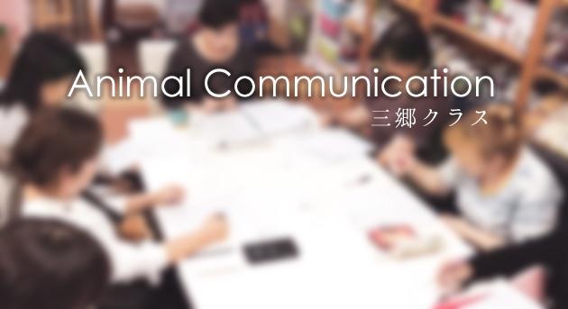アニマルコミュニケーション講座、東京、神奈川、埼玉、千葉